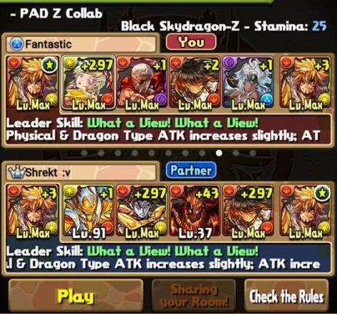 PAD Z Team